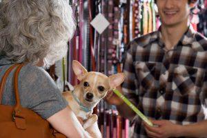 על מגוון האפשרויות שמציעה חנות חיות